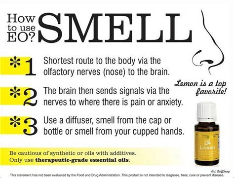 how to use essential oils to scent a room how to use yleo smell living essential oils