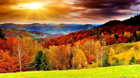 autumn seasons autumn wallpapers hd wallpaper cave