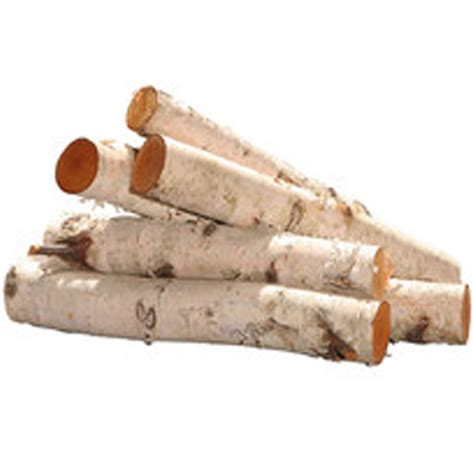 birch gas fireplace logs small fireplace insert small gel fireplaces by