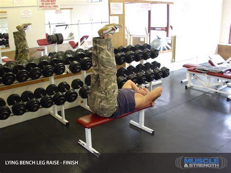 lying bench leg raise click to enlarge