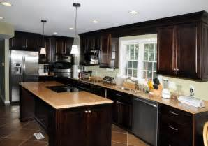 Remodeled Kitchen Cabinets by Top Elegant Remodeled Kitchens Set 19 Intended For Your