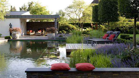 Backyard Pond Pool Biotop Pools Garden Ponds Nature Pools