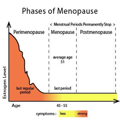 25 best ideas about menopause 25 best ideas about menopause age on pinterest age of