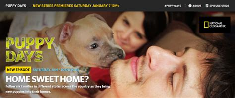 puppy days nat geo uptown office to be featured on national geographic official of capital title