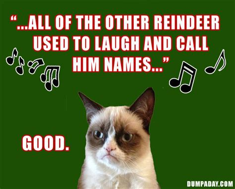 Gay Cat Meme - angry cat meme christmas i6 gay travel information gay