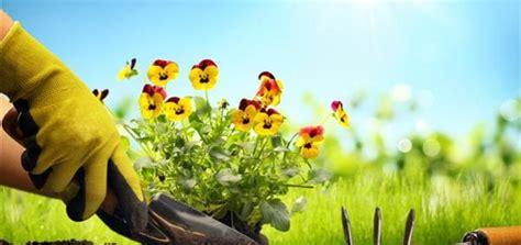spring landscaping tips gardening tips tricks for spring c v mason insurance