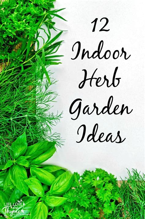 indoor herb garden ideas 12 indoor herb garden ideas and thyme