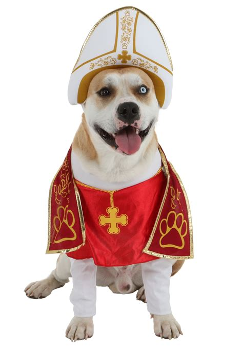 new year costumes for pets holy hound pet costume