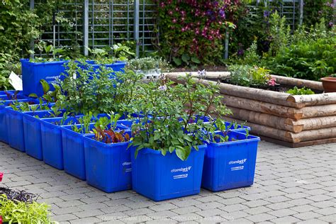 containers for gardens remember to always do this new container garden pots