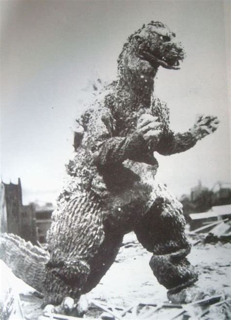 best of gojira 870 best images about godzilla on godzilla