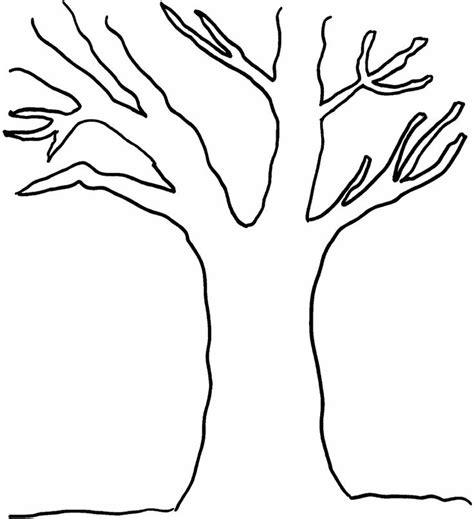 tree leaf coloring pages 40 best tree images on pinterest tree branches coloring