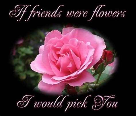 flower wallpaper with friendship quotes free holiday wallpapers friendship day flower wallpapers