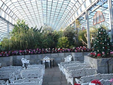 duthie park winter gardens carnivorous plants picture of duthie park winter gardens
