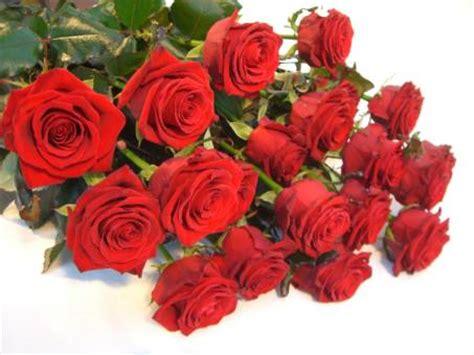 spedire fiori a roma spedire fiori roma fiori a domicilio roma le fiorerie