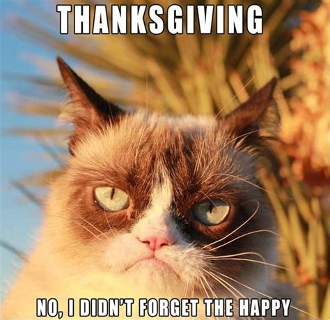 Happy Thanksgiving Meme - thanksgiving funny pictures quotes memes jokes