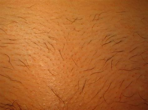photos of viginal hair how to shave your pubic hair area for women