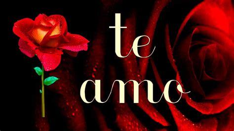 imagenes y rosas de amor imagenes con rosas y frases de amor imagenes de amor