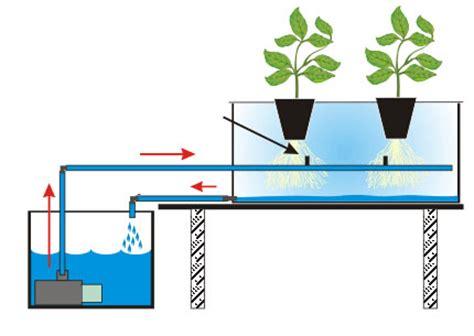 membuat sistem hidroponik 6 teknik hidroponik sederhana untuk pemula petani top
