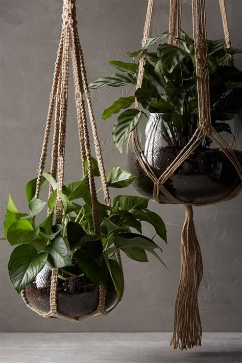 Rope For Hanging Plants - 33 creative ways to include indoor plants in your home