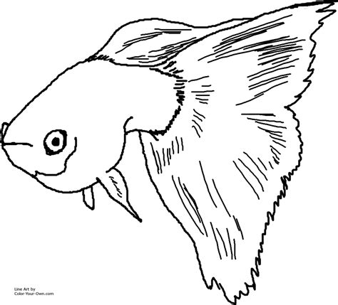 Guppy Coloring Pages fancy guppy coloring page