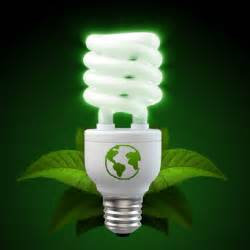eco friendly tips environmentally awesome