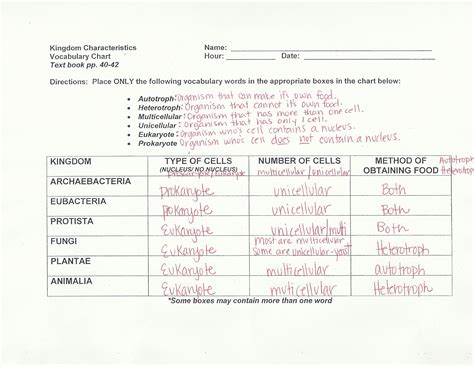 Cell City Analogy Worksheet by Cell City Analogy Worksheet Answers Worksheets