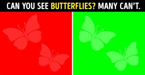 color perception test 11 tests to check your vision clarity and color perception