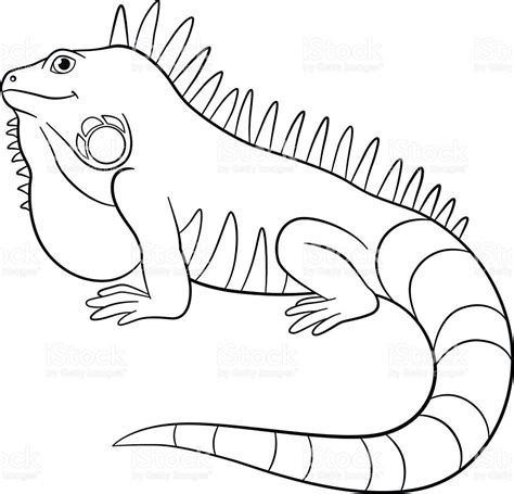 letter i is for iguana coloring page free printable elegant iguana cartoon coloring page in seasonal colouring