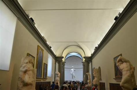 accademia gallery david by michelangelo florence david michelangelo galleria dell accademia picture