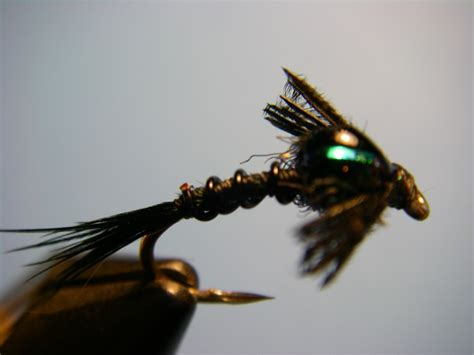 black nymph pattern early black stonefly nymph optional step 9 5 current