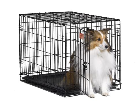 best crates for puppies midwest icrate folding metal crate all the best stuff
