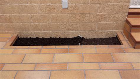 patio interior ladrillo reforma de patio ideas reformas viviendas
