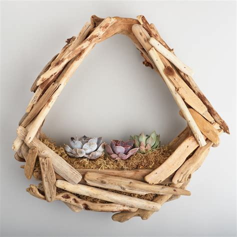 Driftwood Planter by Live Succulent Garden In Hanging Driftwood Planter World