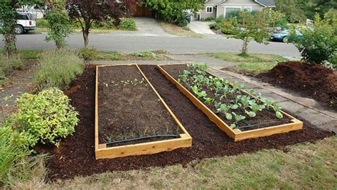 making raised garden beds use a raised garden bed to overcome poor soil buy raised