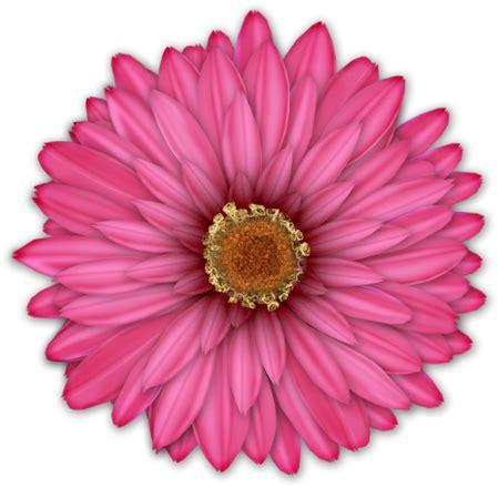 printable pictures of blue flowers cosas para photoscape im 193 genes para photoscape de flores
