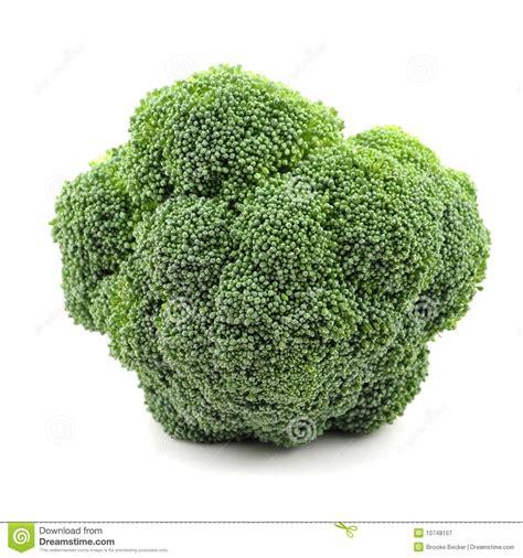 broccolo a testa testa di broccolo fotografia stock libera da diritti
