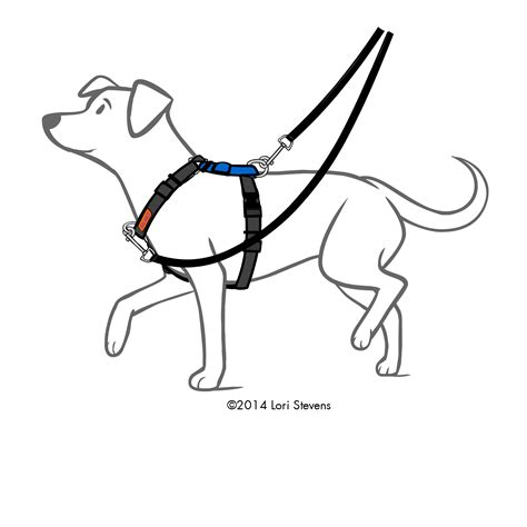 balance harness balance harness blue 9 pet products maquoketa ia