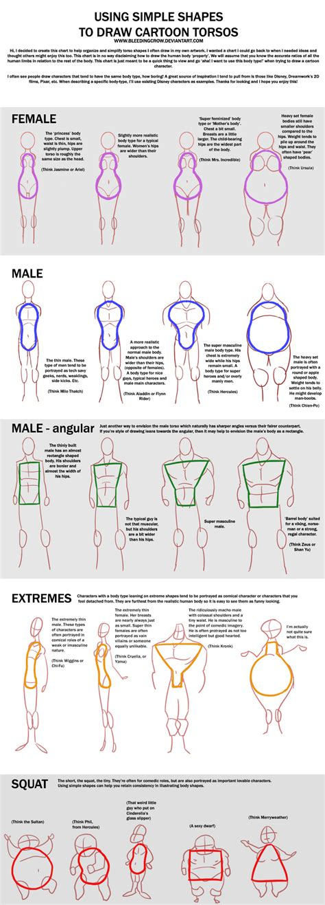 draw chart chart torso by macawnivore on deviantart