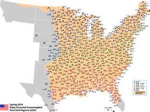 hummingbird migration comparison 2012 vs 13 refuge forums