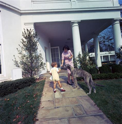 family dog house st c363 8 63 john f kennedy jr with family dog wolf at the white house john f