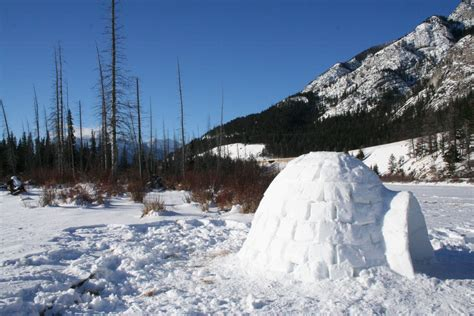 house snow how to build a snow house or snow fort with kids fun times guide to weather