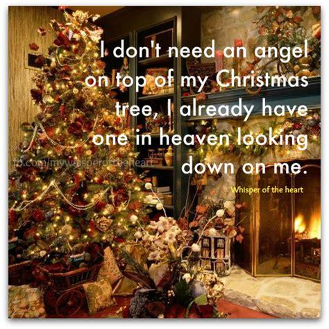 my christmas tree died sfgems december 2012