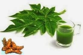Herbal Untuk Demam Berdarah ramuan herbal untuk demam berdarah