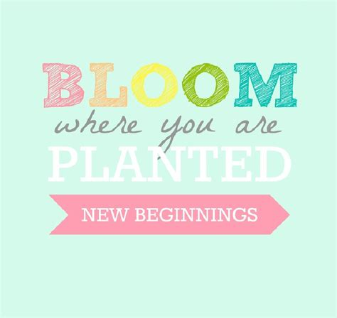 themes about new beginnings all things bright and beautiful yw new beginnings bloom