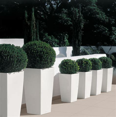 White Outdoor Plant Pots Lechuza Cubico White Indoor Outdoor Contemporary Planter