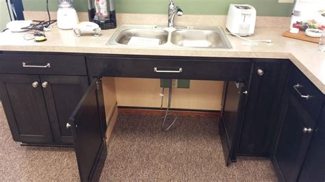 Ada Kitchen Sink accessible kitchen sink rapflava