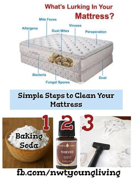 how to clean futon mattress cleaning your mattress cleaning tips pinterest