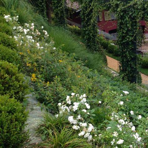 novello giardini il giardino terrazzato novello giardini