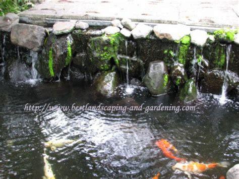 Pompa Aquarium Ikan Koi kolam ikan