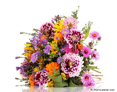 beautiful bouquet florist flower shop florist in 96 wonderful flowers bouquet big multicolor wonderful